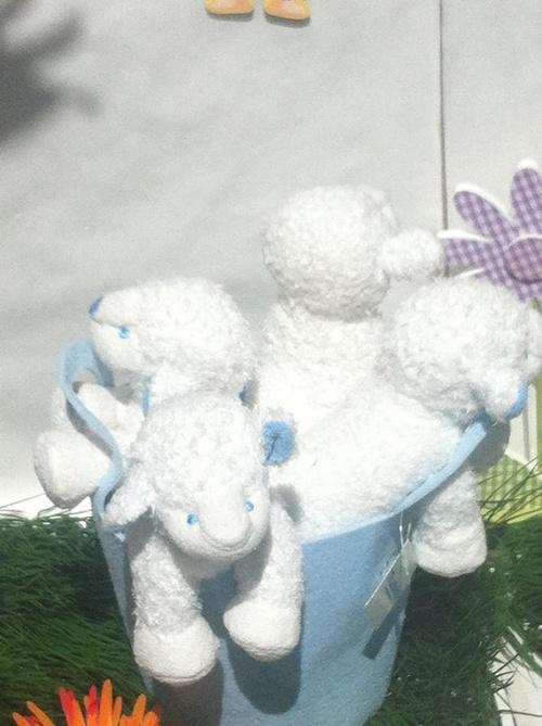 Les moutons sont des stars(6)