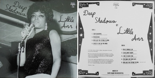 "LITTLE ANN (BRIDGEFORTH)  ""Deep Shadows"" TIMMION ALBUM LP-004 - 2009"