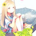 Icones de mangas