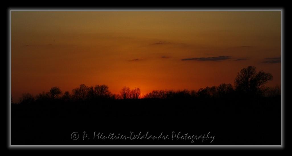 Cadeau du soleil à la nuit tombante...