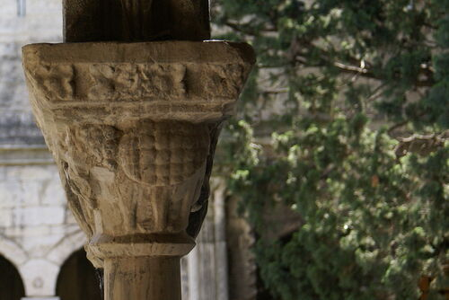 Tarasques médiévales