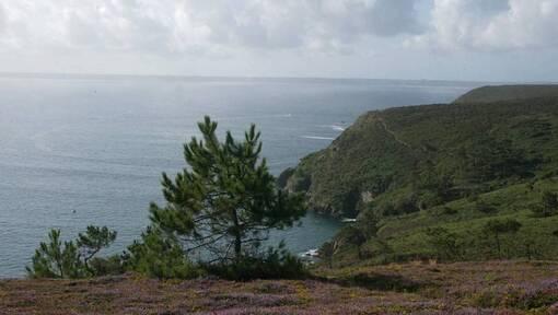 Presqu'île de Crozon-Brest métropole. 50personnes ont manifesté contre la fusion (OF.fr-14/12/18-19h39)