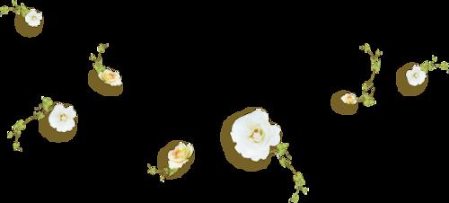 Fleurs en Farandole Série 23