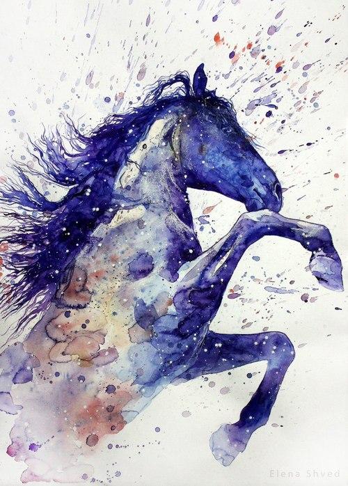 Fabulous horses