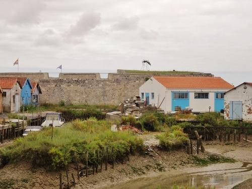 Ile d'Oléron: autour de Zateau d'Oléron (photos)