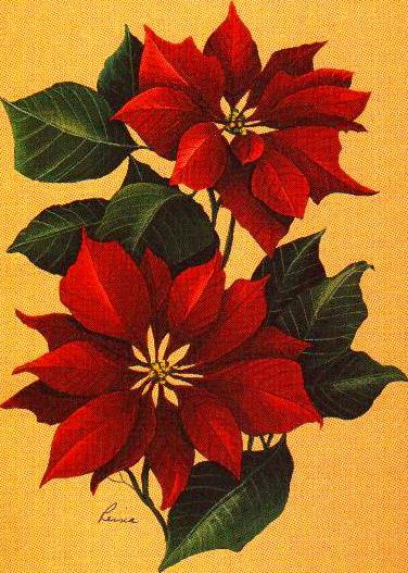 Tubes décorations de Noël 4