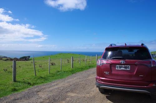 Nouvelle-Zélande#10 - Otago Peninsula