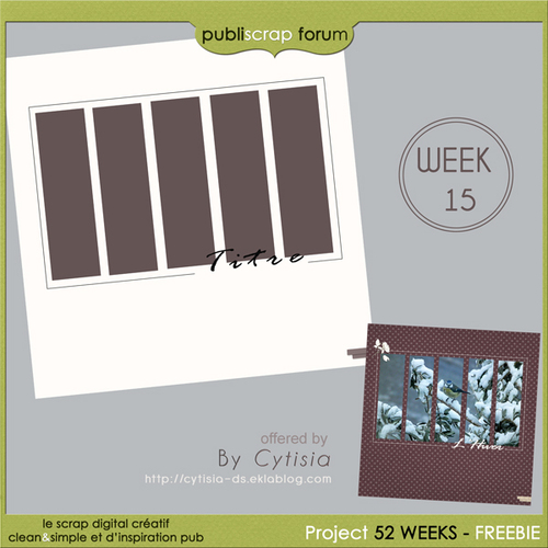 PBS PROJECT Template Week 16/52