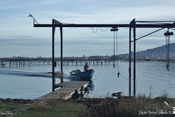Port Conchylicole - Mèze
