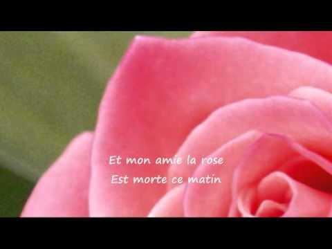 "Mon Amie La Rose"" - ( Françoise Hardy ) - YouTube"