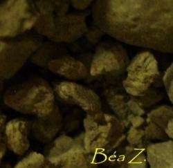 La page de Béatrice Z