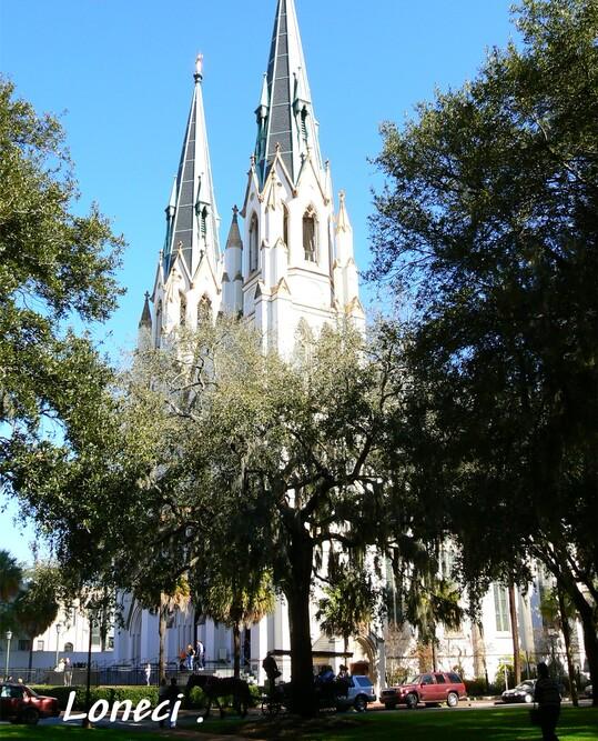 Savannah USA 5