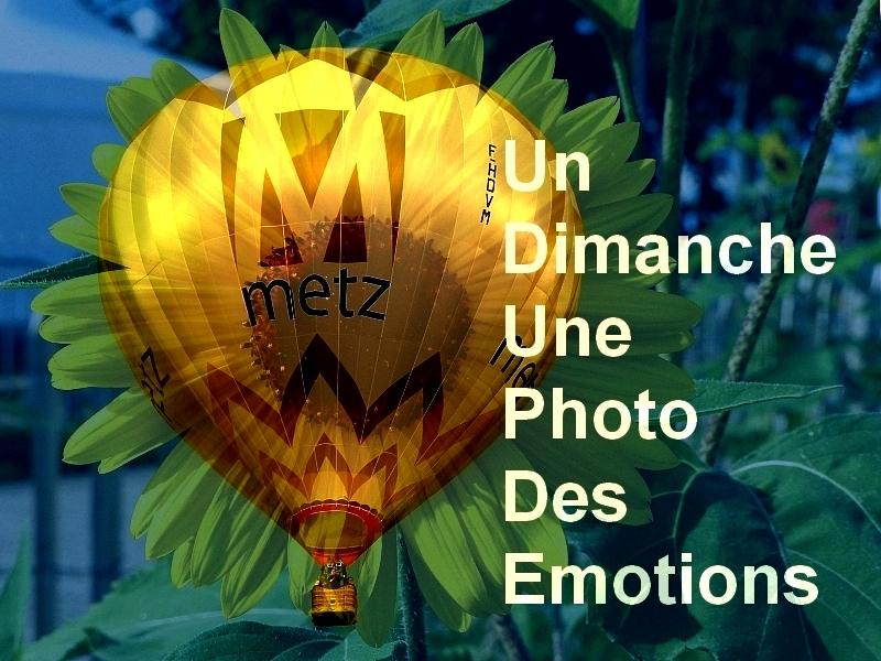Metz / La photo du dimanche 6 septembre 2015...