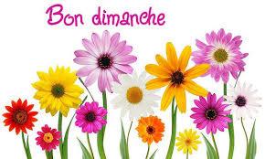 Message Bon Dimanche Humour Amour Amitié - sms original poème image