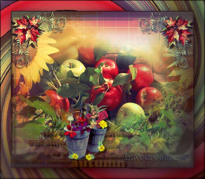 Créations fruits fleurs