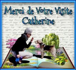 INVITATION AU VOYAGE DANS LE PETIT MONDE DE BABOU