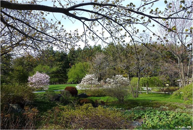 Mes adieux au Jardin Botanique de Montréal (#2)