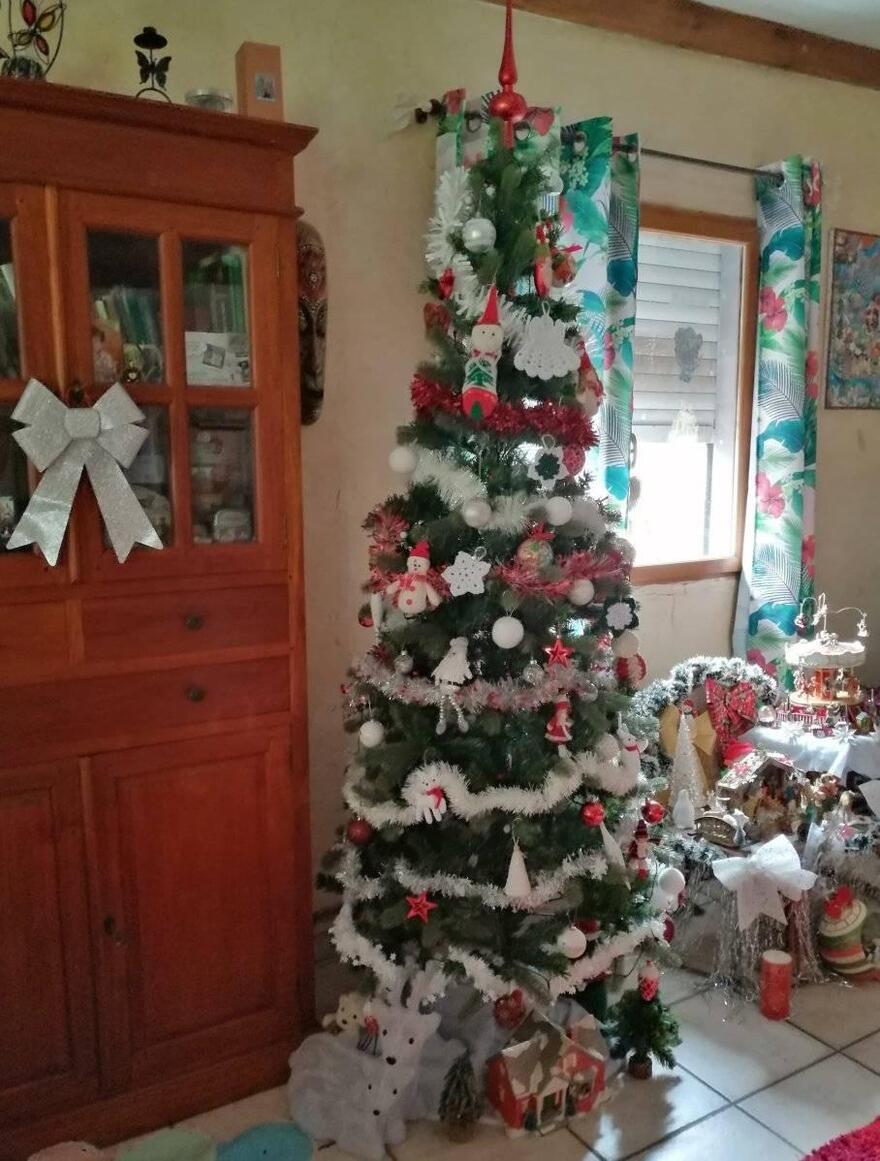L'image contient peut-être: sapin de Noël et intérieur