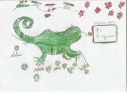 Coloriages et dessins: l'iguane des Animots Rigolos- Sons Voyelles