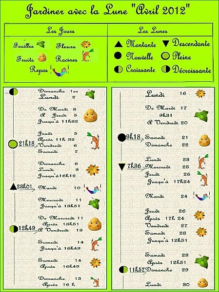 jardiner-avec-la-lune-avril-2012-copie-1.jpg