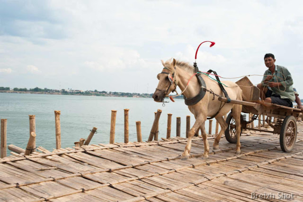 cheval pont en bambou Kampong Cham