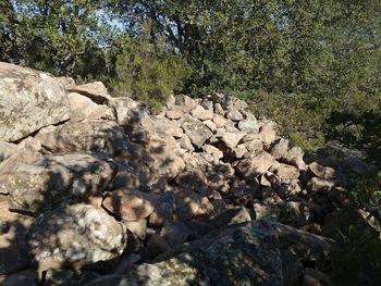 Le dolmen (face Sud)