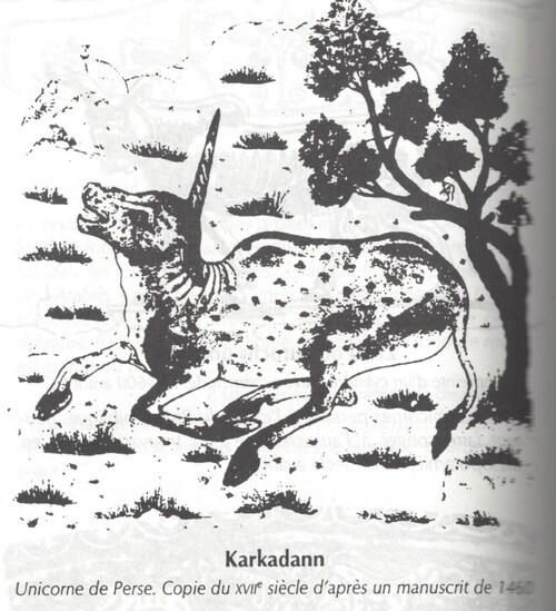 Karkadann - Caroutch 1997