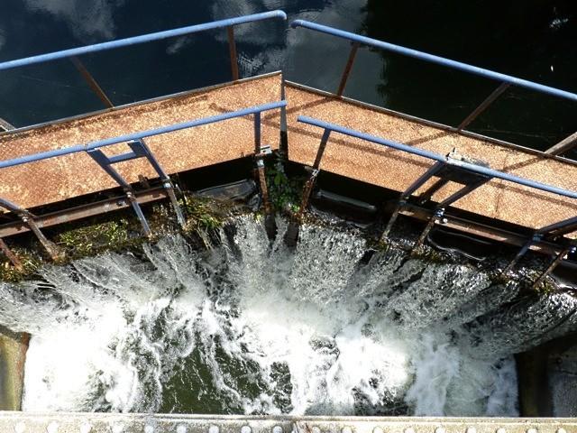 Plan d'eau de Metz - 7