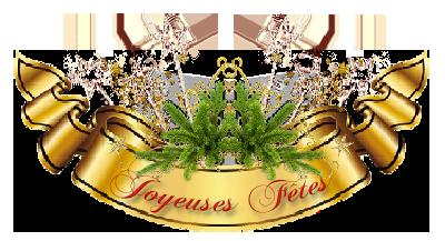 Carte joyeux Noël 6