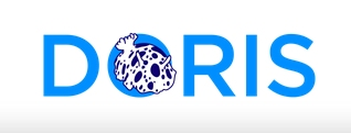 http://ekladata.com/QwLdDkBCX-c0Hfkq7z3VKAxPL-Y/logo-DORIS.jpg