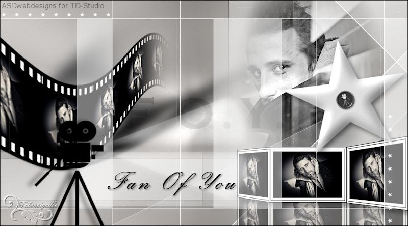 *** Fan Of You - ASDwebdesigns for TD-Studio  ***
