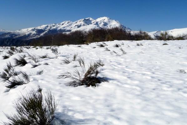 q19---Sur-la-neige.JPG