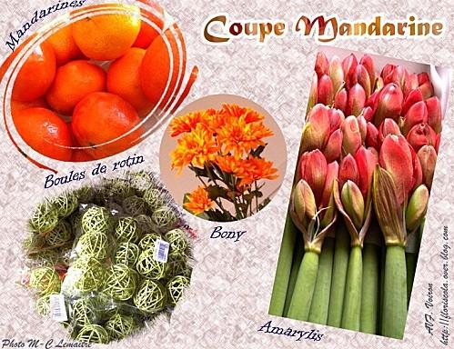 coupe mandarine 5