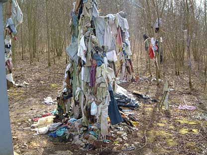 Offrandes III : les arbres à loques