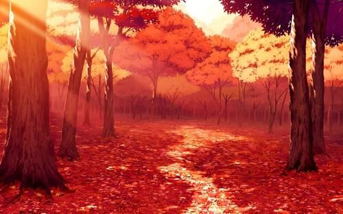 La forêt automnale