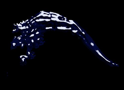 Éclaboussures d' eau