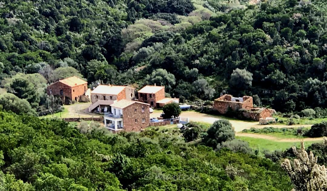 Vue sur le hameau de Calca - Galéria depuis le maquis corse