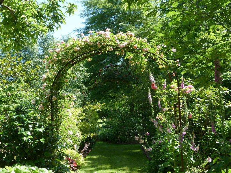 Au jardin chez Mary et Joël ( 3 )