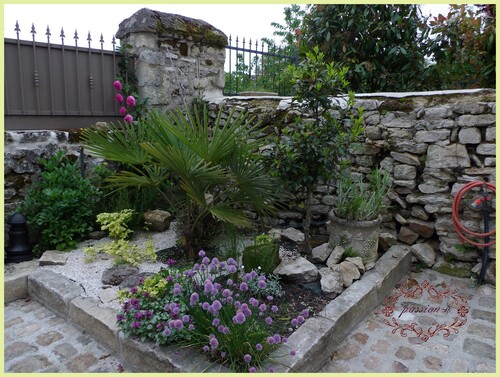 jardin secret (2)