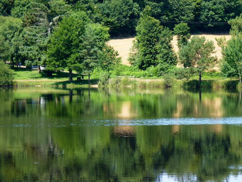 Le Tombeau de Merlin et La Fontaine de Jouvence