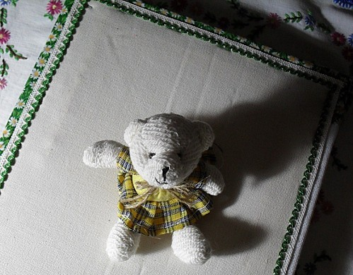 petit ours violettes 038