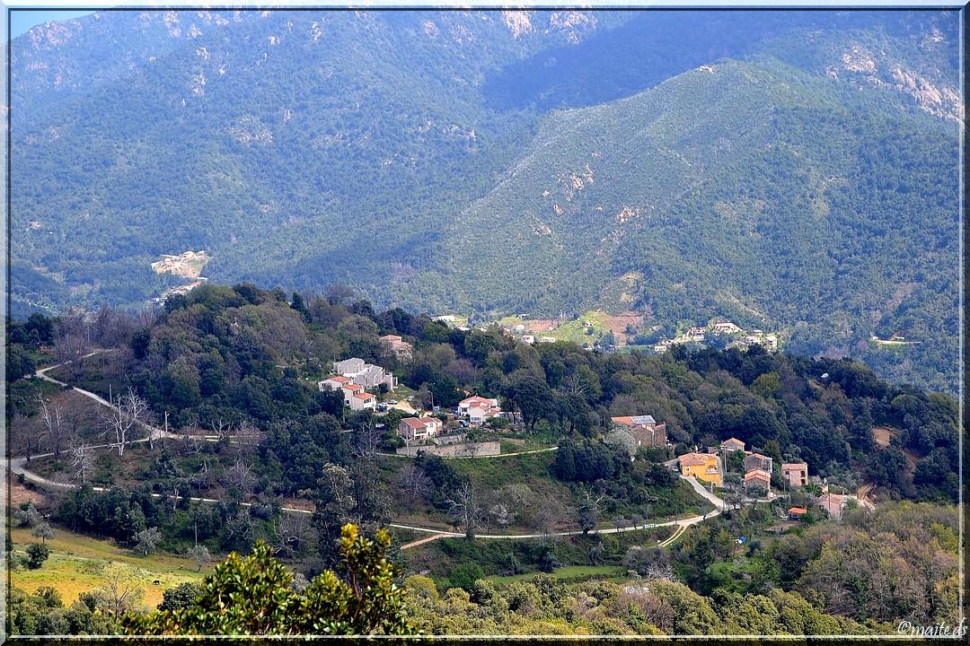 Vico - Corse (1) 11 avril 2014