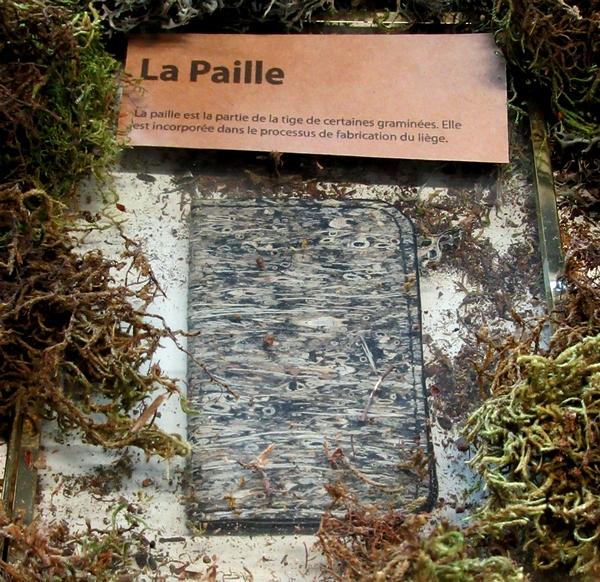 """Paola Borde, une artiste maroquinière qui réalise de très beaux objets en """"cuir végétal"""", présente ses superbes réalisations à l'Office du Tourisme de Châtillon sur Seine...."""