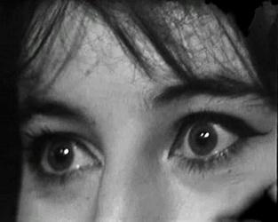 15 octobre 1965 / VIENT DE PARAITRE