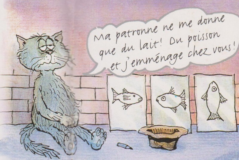 Chat-Rabbi-Ha!