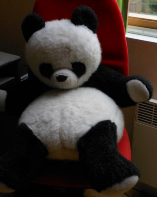 Une soirée de panda...