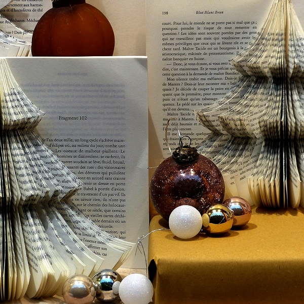 Metz avant le réveillon de Noël 2013...