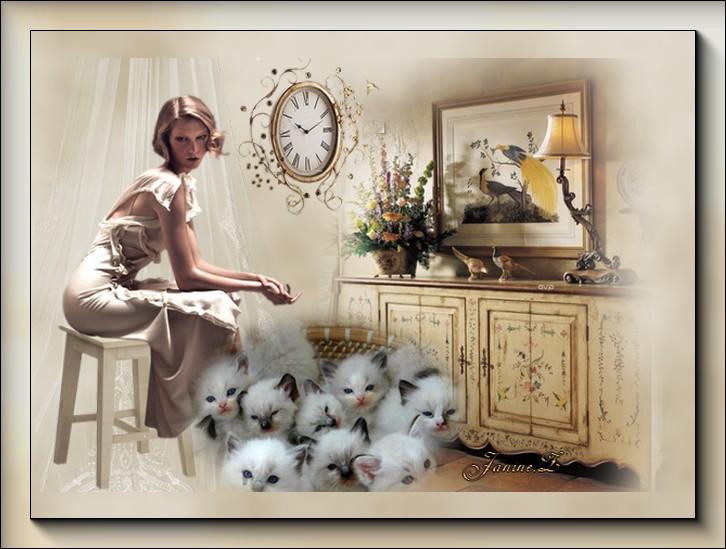 corbeille de chatons