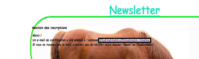 [TUTO] n°1 Newsletter