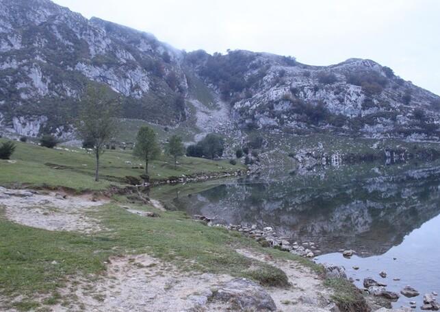 6 Lac de Covadonga (21)